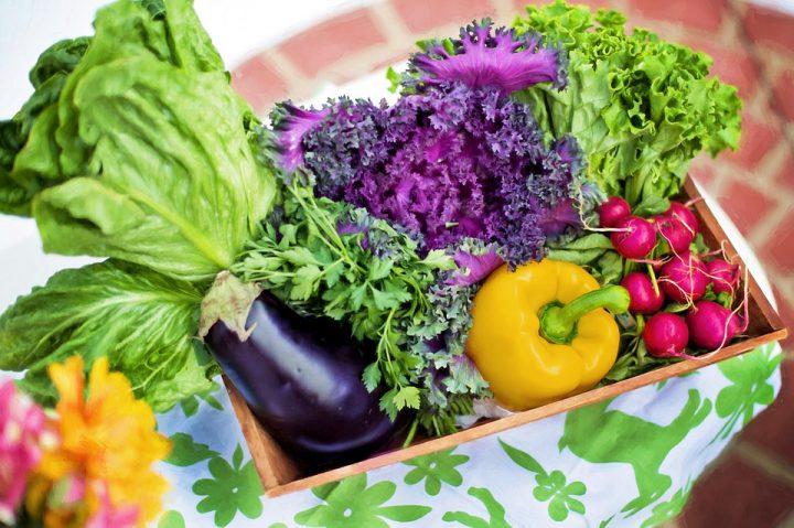 ガーデニング初心者におすすめしたい手軽に栽培できる野菜10選