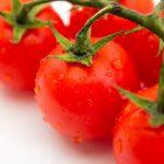 ベランダでも家庭菜園ができる!野菜を育てるための基礎知識