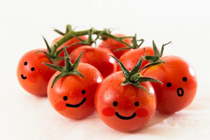 やってみよう!ペットボトルでスクスク育てるミニトマト