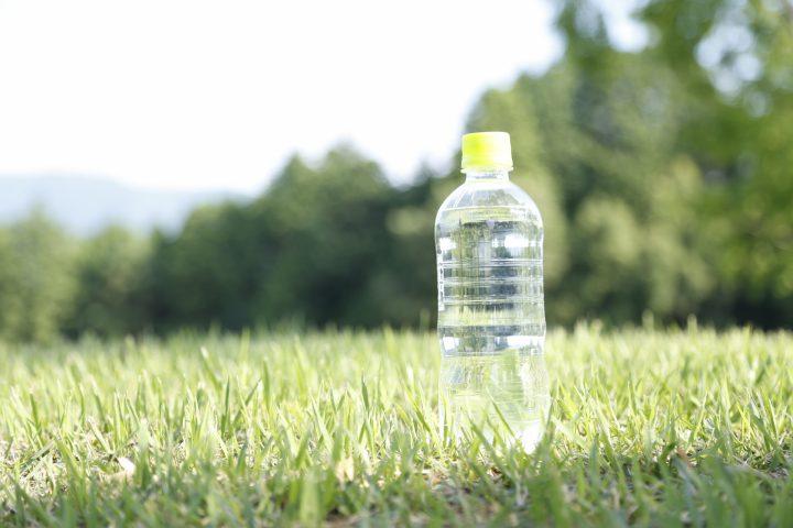 やってみよう!ペットボトルで水耕栽培