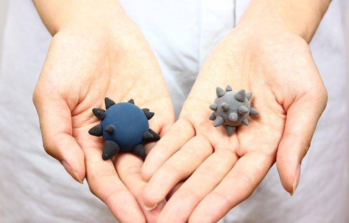 ウイルスによる感染症の予防は年間を通してフルに行う必要がある