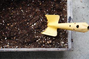 肥料の種類と適切な使い方とは?【ガーデニングの基本】