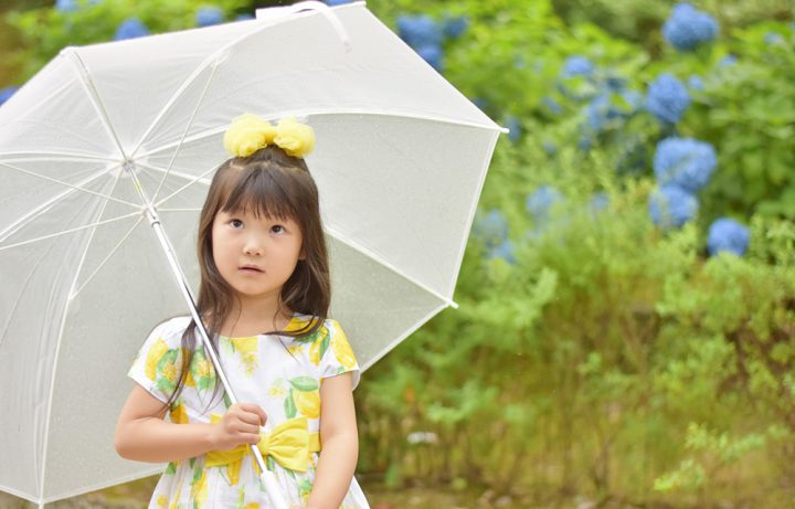 梅雨の時期は十分な湿気・カビ対策を施して快適な生活を送ろう!