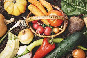 野菜を保存する方法を解説。冷凍・冷蔵・常温どれが適している?