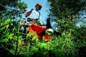 お庭の除草方法。手軽にできる除草対策や除草剤の使い方について解説