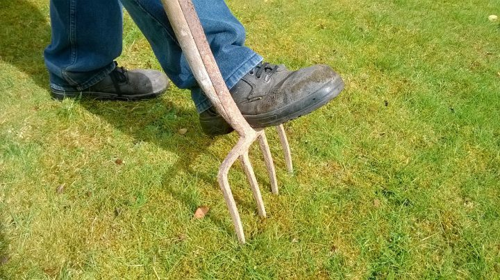 芝生の除草方法