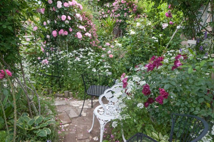 ガーデニングデザインで自宅のお庭をおしゃれな空間に!