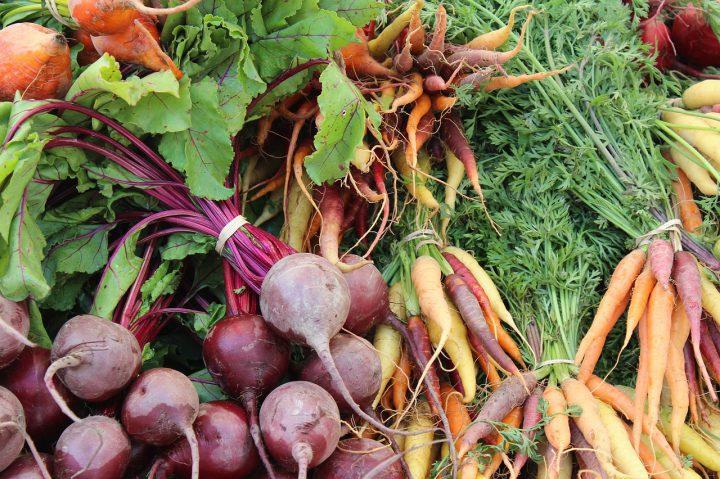 ポタジェガーデンで観賞と収穫を楽しもう!