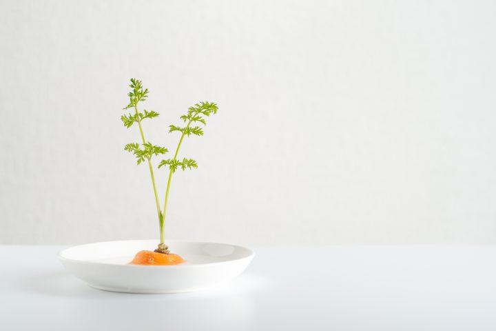 【簡単でおしゃれ!】キッチン菜園におすすめの野菜と育て方をご紹介
