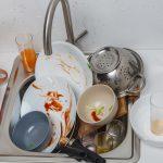 コバエが発生しやすい場所と対処法(台所、お風呂場、ゴミ箱、観葉植物など)