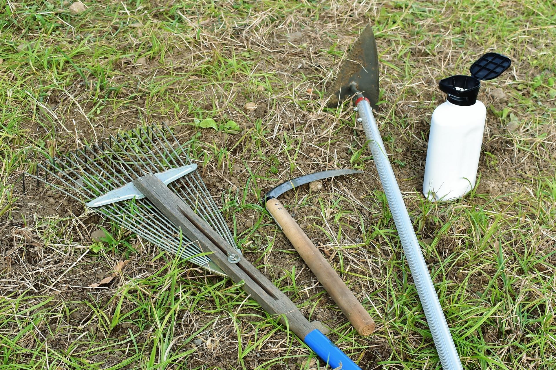 除草剤の種類と使い方。農薬のありなしはどう使い分ける?