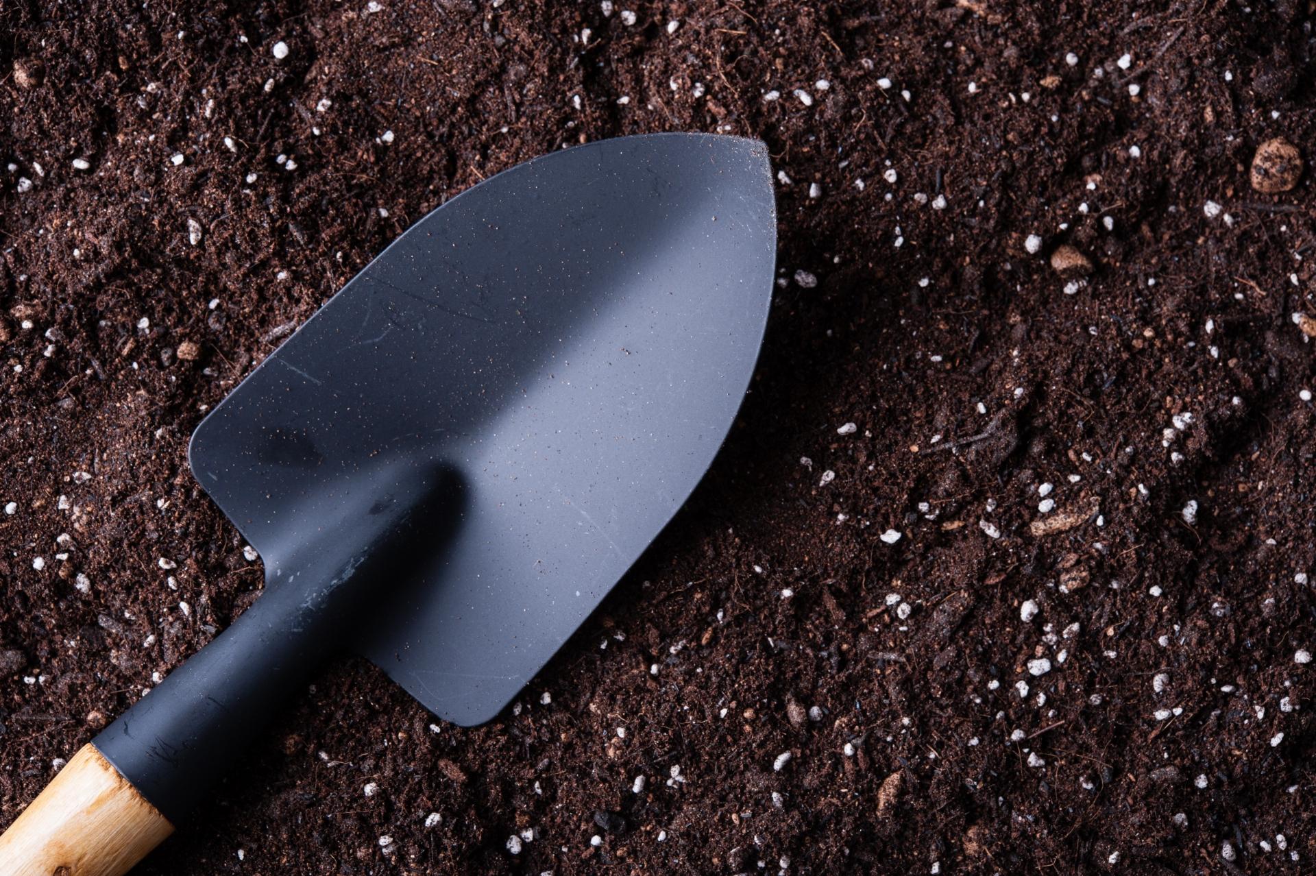 家庭菜園のピーマン栽培で必要なもの