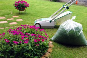 庭によく出る害虫と対処法について。【100種類以上】の害虫に効く殺虫剤もご紹介!