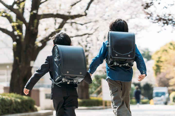 入学式のイメージが、桜からイチョウになる日が…