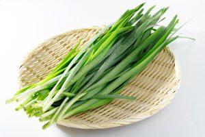 【栄養満点の野菜】ニラの育て方やコツをご紹介