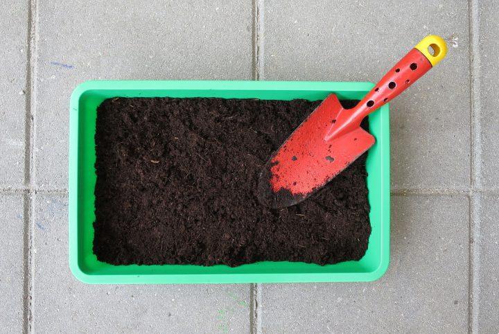 シソの栽培で準備するもの