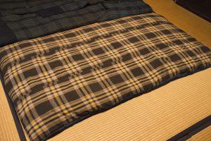 万年床はダニやカビが発生しやすい!布団が干せないときの対策を解説