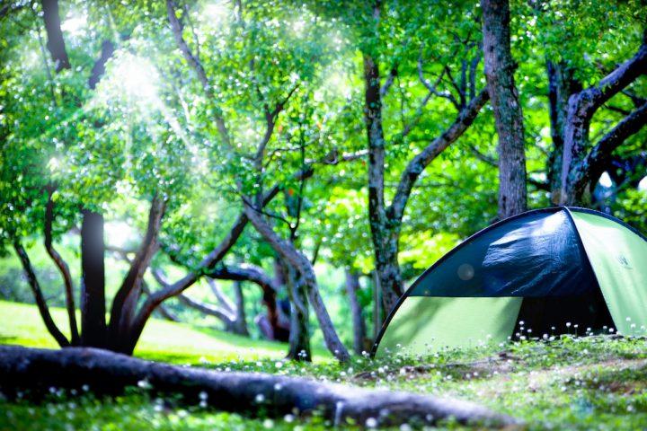 徹底した感染対策で、キャンプを安心・安全に楽しもう!