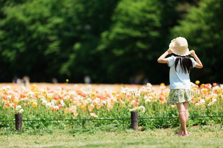 花がきれいな公園へ出かけるときは