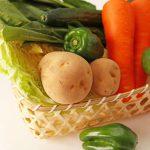 【食品の保存方法】食材が傷む原因や生野菜を長持ちさせる方法を解説