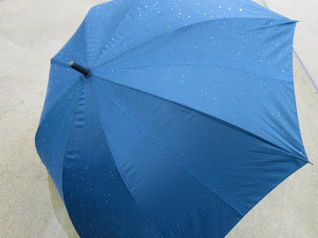 傘のカビの取り方