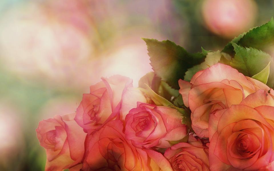 花を贈る際はマナーを心得て